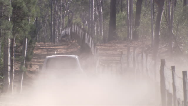 MS Rear view of SUV driving on dirt road along dingo fence, Tinnenburra Sheep Station, Queensland, Australia