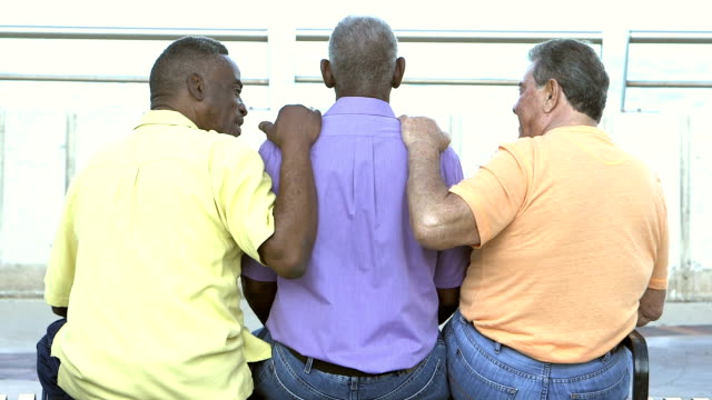 Rear view of three multi-ethnic senior men on bench