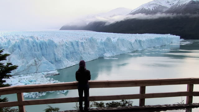 ws, rear view of woman overlooking perito moreno glacier, los glaciares national park, patagonia, argentina - eco tourism stock videos & royalty-free footage