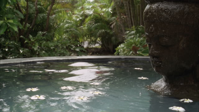 SLO, MO, CU, Rear view of woman submerging in water basin in tropical forest, Maui, Hawaii, USA, SLO MO