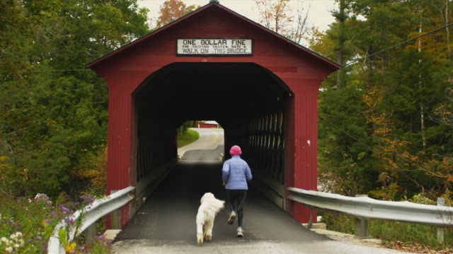 ws ms pan rear view of women jogging with dog through covered bridge, manchester, vermont, usa - region new england stock-videos und b-roll-filmmaterial