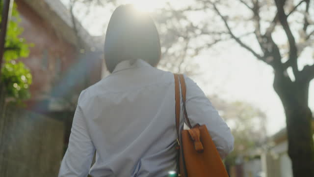 rear view of young businesswoman commuting to work under cherry blossom sakura trees in city - smart casual stock videos & royalty-free footage