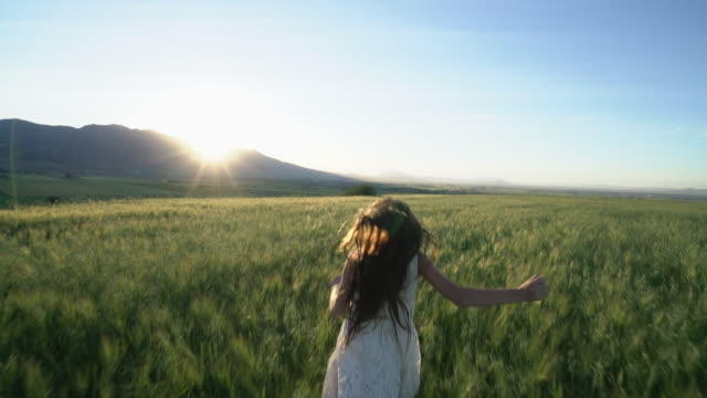 ws ts sm rear view of young girl running in a field at sunset. - wheat stock videos & royalty-free footage