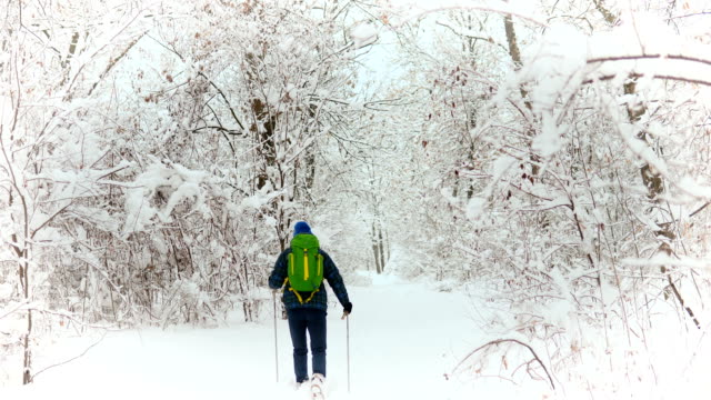 Rear view of Young Man Traveler walking through the alone snow mountains.