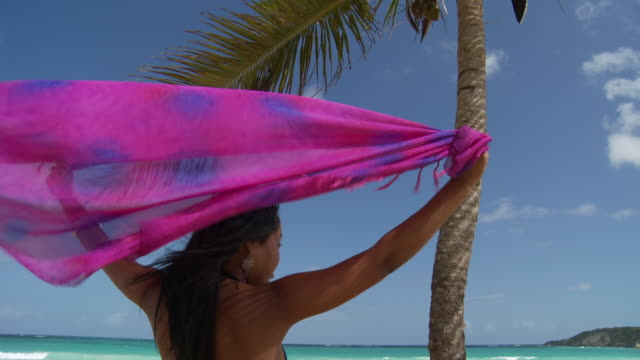 ms, td, rear view of young woman holding flowing scarf over head, facing ocean, punta cana, dominican republic - sarong stock videos and b-roll footage