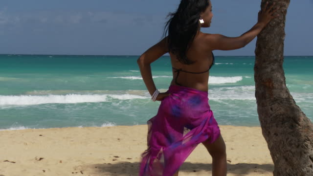 ms, tu, rear view of young woman leaning against palm tree, facing ocean, punta cana, dominican republic - punta cana stock videos and b-roll footage