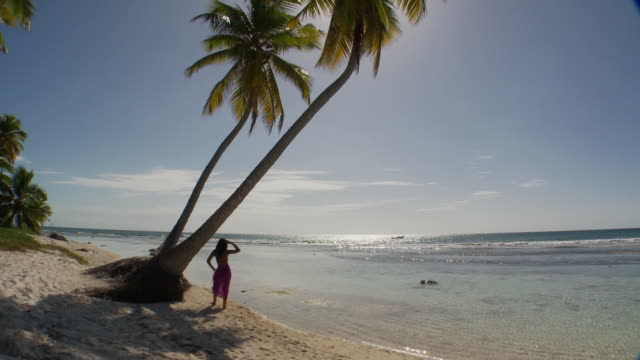WS, HA, Rear view of young woman standing by palm trees, facing ocean, Saona Island, Dominican Republic