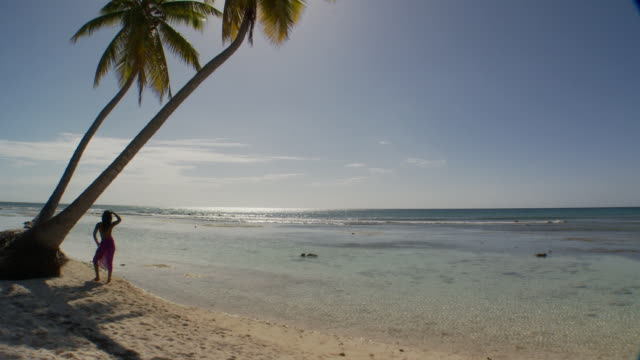 WS, HA, PAN, Rear view of young woman standing by palm trees, facing ocean, Saona Island, Dominican Republic