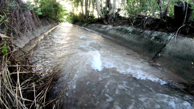 rear view, old concrete flowing water. - harvesting stock videos & royalty-free footage