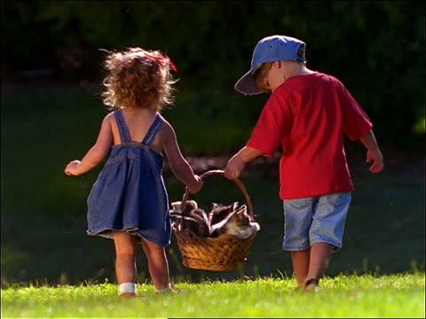 rearview of boy and girl carrying basket of kittens in grass - korb stock-videos und b-roll-filmmaterial