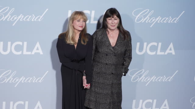 rebecca de mornay and anjelica huston at the 2019 hollywood science gala on february 21 2019 in los angeles california - anjelica huston stock videos & royalty-free footage