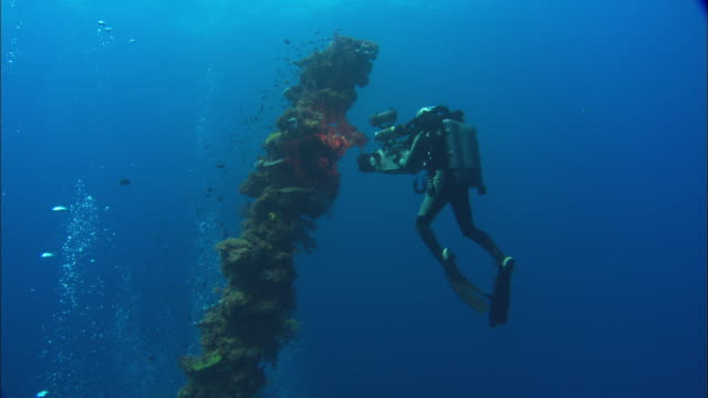 rebreather diver films, hoki, mast with corals, bubbles rising, chuuk lagoon, south pacific  - camera photographic equipment stock videos and b-roll footage