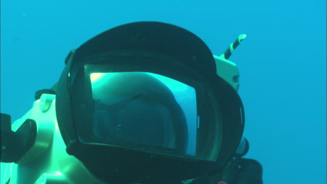 Rebreather diver films Silky sharks on platform of shark swim by, Saudi Arabia, Gulf