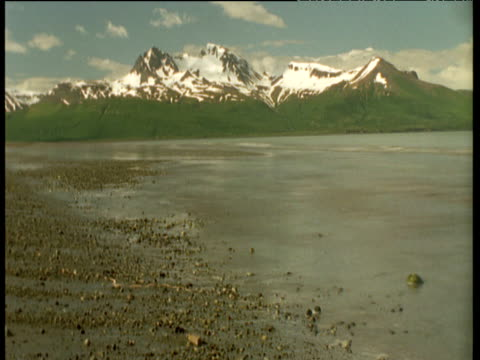 receding tide with snow capped mountains in background, alaska - receding tide stock videos & royalty-free footage