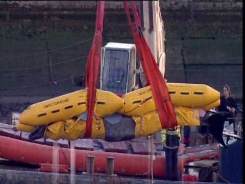 vídeos de stock, filmes e b-roll de recently deceased bottlenose whale lifted in inflatable harness out of river thames onto boat london 25 jan 06 - cetáceo
