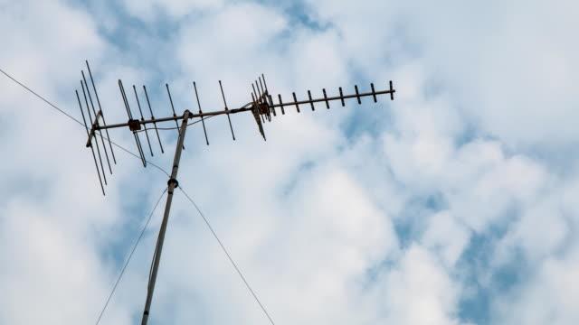 reception antenna tv. time lapse - antenna parte del corpo animale video stock e b–roll