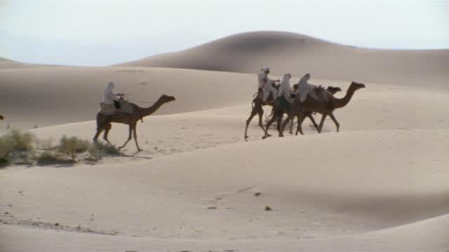 ms, pan, re-creation, africa, tuareg tribesman riding camel in desert, rear view - 羊飼いの棒点の映像素材/bロール