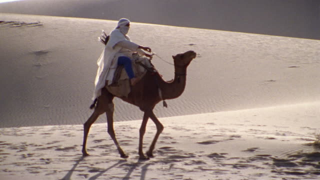 slo mo, ms, pan, re-creation, africa, tuareg tribesman riding camel in desert - middle east stock videos & royalty-free footage