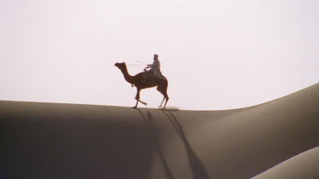 ws, pan, re-creation, africa, tuareg tribesman riding camel in desert - camel stock videos & royalty-free footage