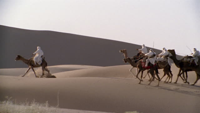 WS, PAN, Re-creation, Africa, Tuareg tribesmen riding camels in desert