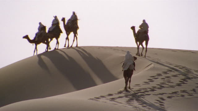 WS, TU, PAN, Re-creation, Africa, Tuareg tribesmen riding camels in desert