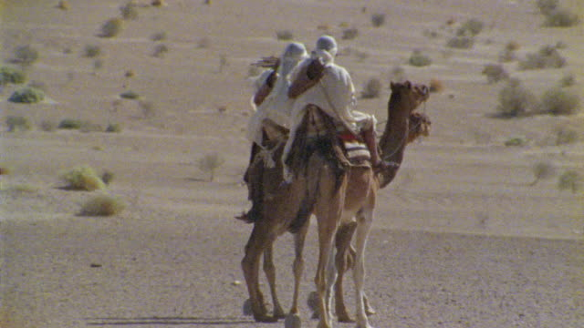 SLO MO, MS, PAN, Re-creation, Africa, Tuareg troops riding camels in desert, rear view
