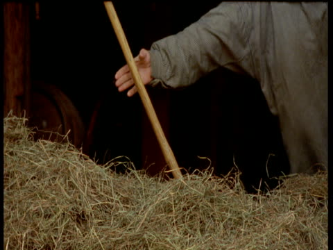 recreation of 19th century farmer collecting hay with pitchfork, sturbridge, massachusetts\n - pitchfork stock videos & royalty-free footage