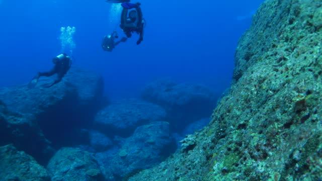 Recreatie duiken in rif, Japan