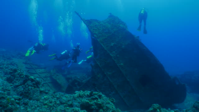 Recreational scuba divers in underwater wreck