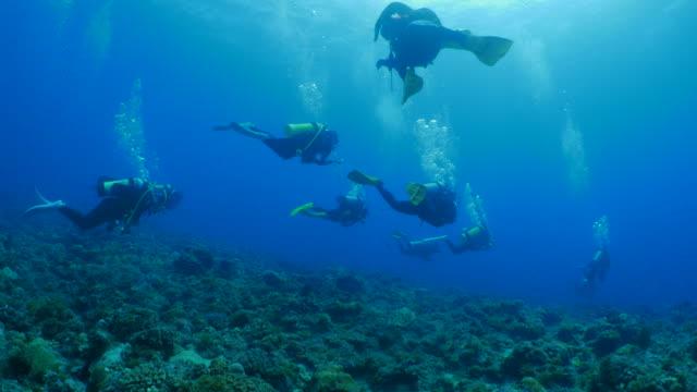 Recreational scuba diving activity, Liuqiu, Taiwan