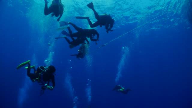 vídeos de stock, filmes e b-roll de recreativas subaquática, mergulho no mar azul - ponto de vista de mergulhador