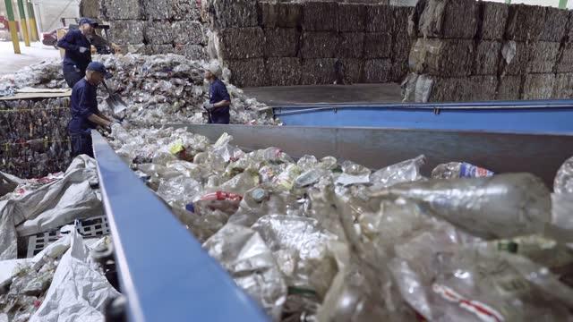 リサイクルプラスチック工場の労働者は、コンベアベルトで使用済みpetボトルを選択し、仕分け - リサイクル工場点の映像素材/bロール