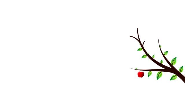 red apple tree - biomedical illustration stock-videos und b-roll-filmmaterial