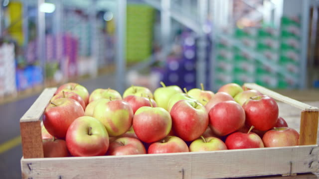 ds red apples in a wooden crate in a warehouse - apple fruit stock videos & royalty-free footage