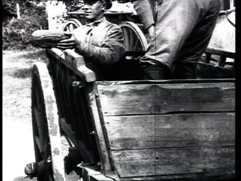 red army bread supply. military drills : unloading breadloaves, soldiers at attention, marching. - 30代の男性だけ点の映像素材/bロール