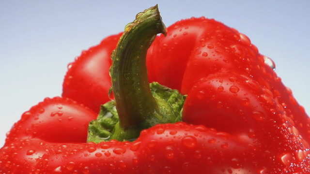 cu, red bell pepper with water drops rotating - red bell pepper stock videos & royalty-free footage