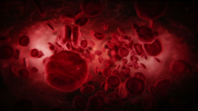 stockvideo's en b-roll-footage met red blood cells in artery. dark. loopable. - microbiologie