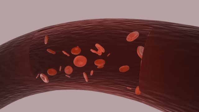 red blood cells in artery.3d animation. - vena video stock e b–roll