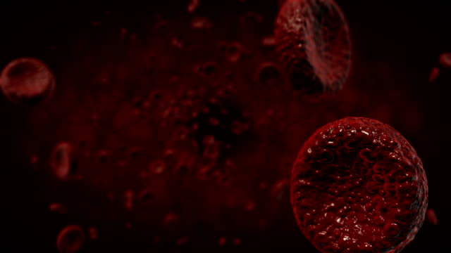 4k red blood cells - stock video - globulo rosso video stock e b–roll