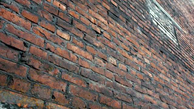 red brick wall - brick stock videos & royalty-free footage
