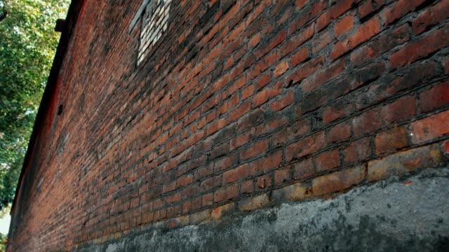 赤いレンガの壁  - レンガの壁点の映像素材/bロール