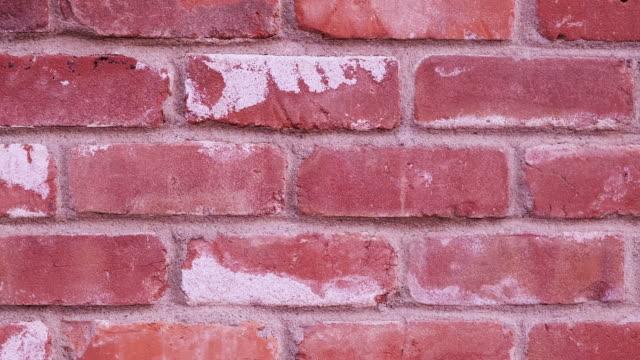 vídeos y material grabado en eventos de stock de muro de ladrillos rojos marco completo panoramizar fondo - pared de ladrillos