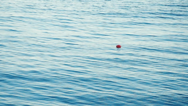 red buoy on the sea surface