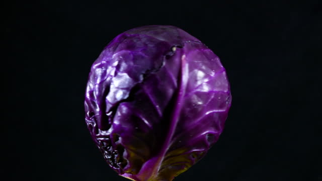 red cabbage turning on black background - red cabbage stock videos & royalty-free footage