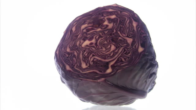 vidéos et rushes de red cabbage. - crucifers