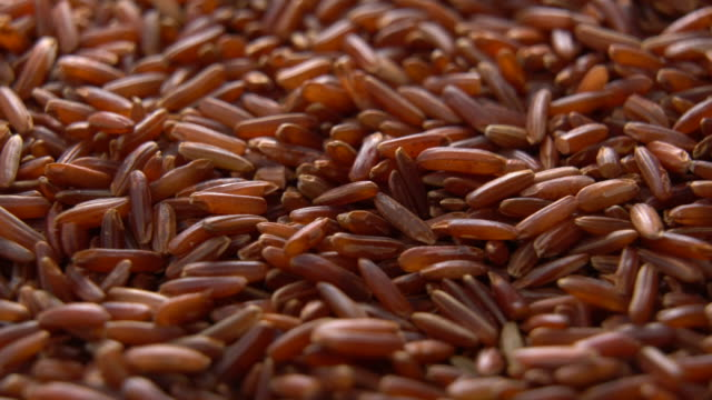 red cargo rice rotating with close up shot - rice cereal plant stock videos & royalty-free footage