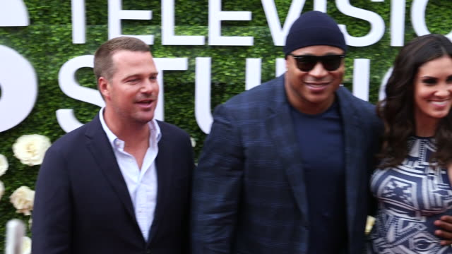 tca red carpet 2017 - ll cool j stock videos and b-roll footage