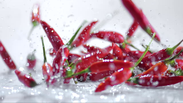 slo mo red chilies bouncing off water covered white surface - pepper vegetable stock videos & royalty-free footage