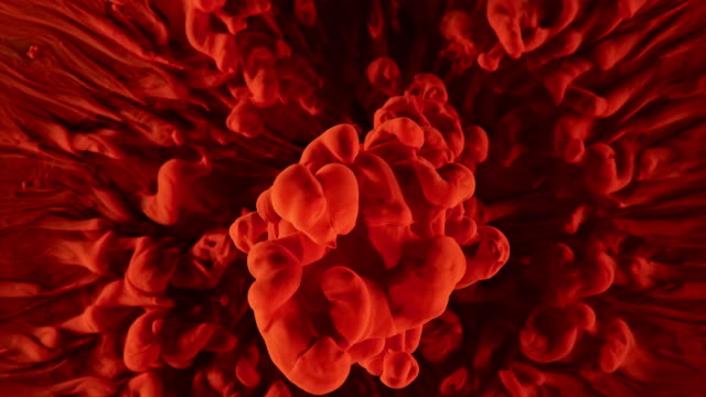 slo mo red color symphony on black background - red stock videos & royalty-free footage