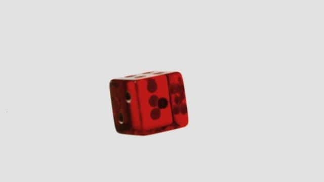 vídeos de stock, filmes e b-roll de red dice falling and bouncing - jogo da sorte